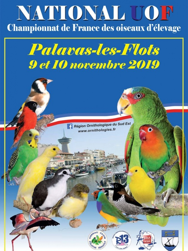National 2019 à Palavas-Les-Flots