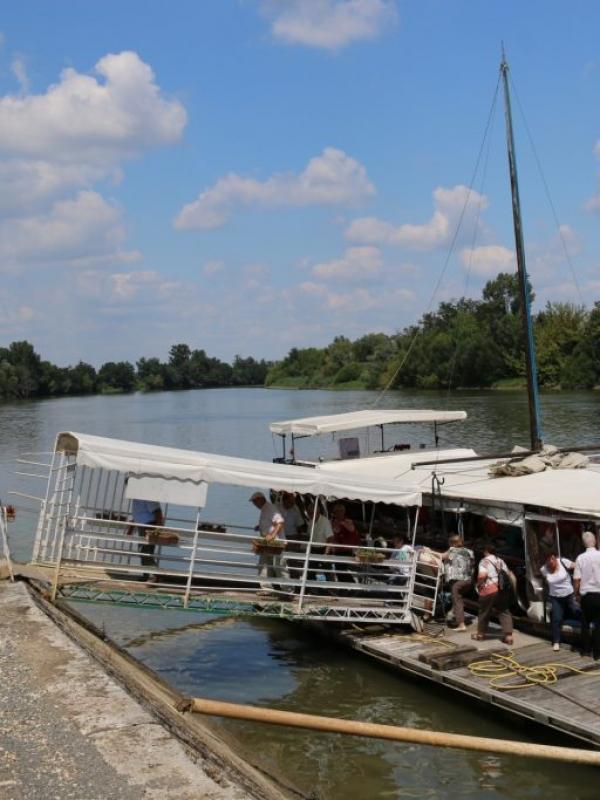 """Souvenir-Souvenir : Sortie à bord de """"La Gabare"""", c'était en 2014…"""