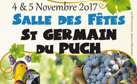 Exposition et Régional Psittacidés à Saint Germain du Puch