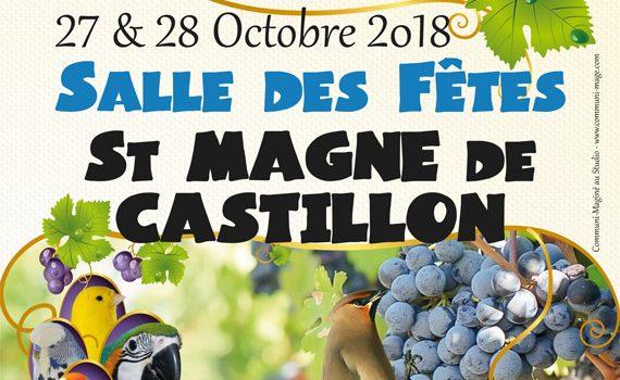 Exposition Ornithologique à Saint Magne de Castillon
